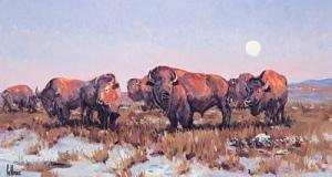 The Herd Bull